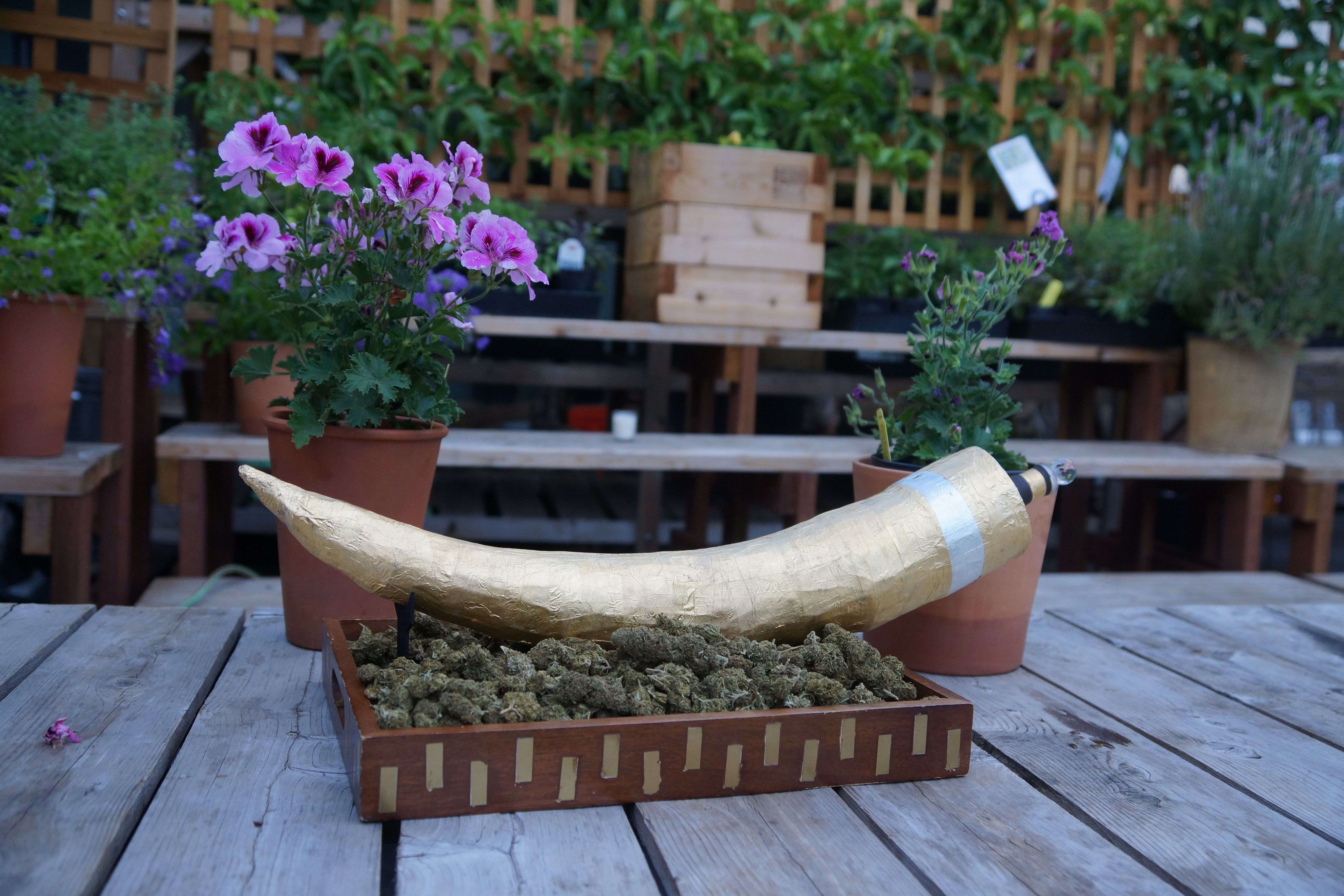 Marijuana Joint Worth $24,000 Is Literal Definition Of Financial
