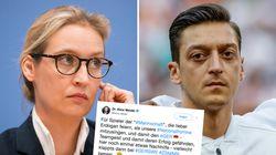 AfD-Frau Weidel will Özil nach Mexiko-Spiel Nachhilfe geben –doch die Aktion geht nach hinten los