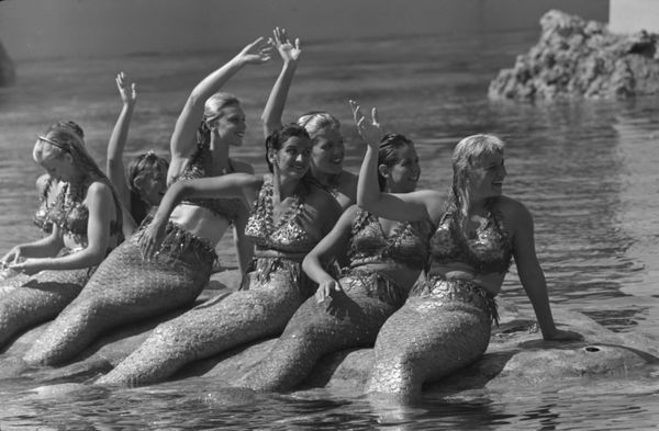 Women dressed as mermaids sit on a rock in the water at Disneyland in the 1950s.