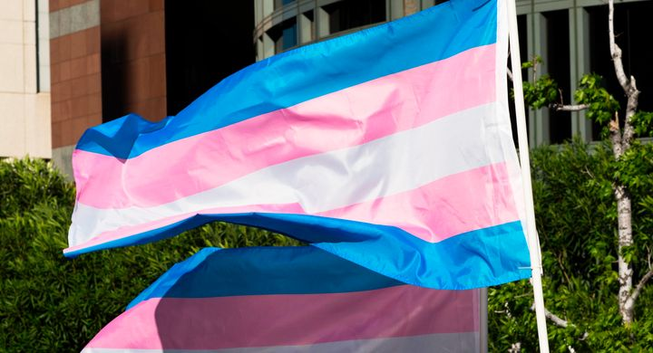 A trans pride flag waves in the wind in Los Angeles, California, on International Transgender Day of Visibility on March 31,