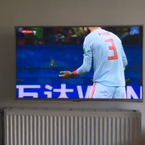 스페인과 이란의 경기 중 포착된 영화같은 한 장면(영상)