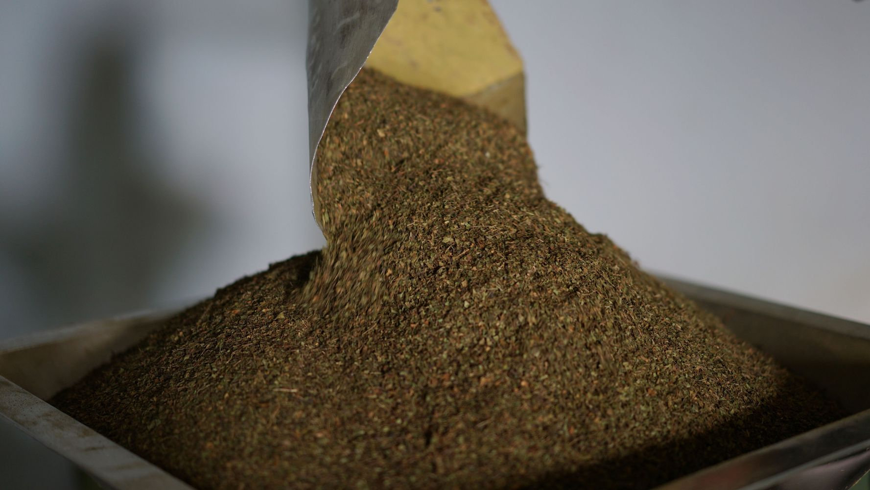Kratom Users In States That Ban It Discuss How Prohibition Has Made Life Worse