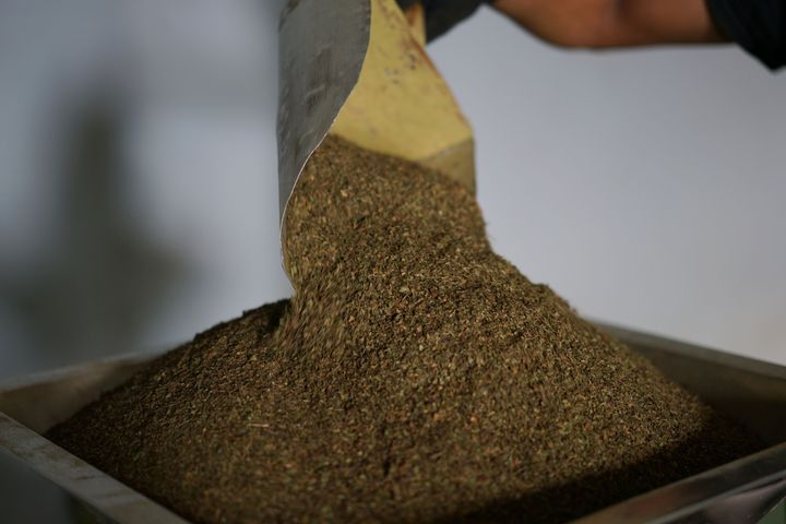 Kratom Users In States That Ban It Discuss How Prohibition