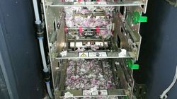 인도의 어느 ATM기에 침입한 쥐가 씹어버린 지폐의