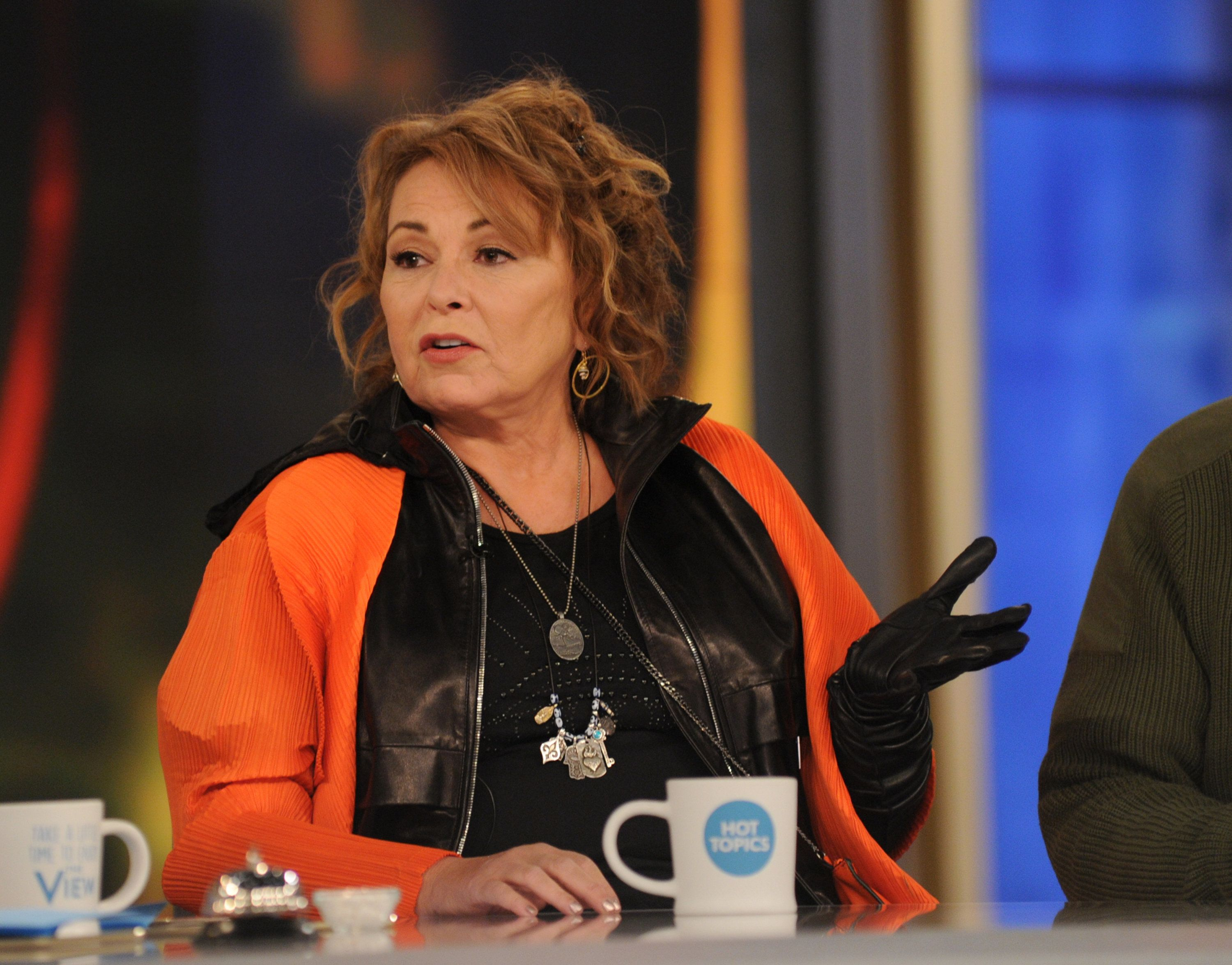 THE VIEW - The cast of Roseanne appear on ABC's 'The View' today, Tuesday, 3/27/18.   'The View' airs Monday-Friday (11:00 am-12:00 pm, ET) on the ABC Television Network.     (Photo by Paula Lobo/ABC via Getty Images)  ROSEANNE BARR