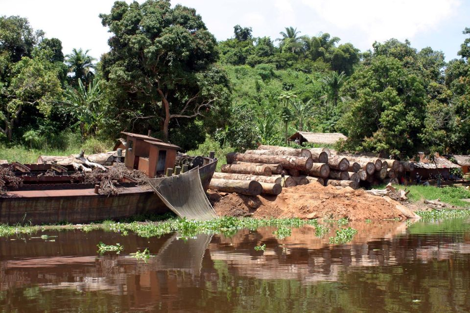Logs lie next to the banks of the Congo River in the Democratic Republic of Congo. Despite a ban...