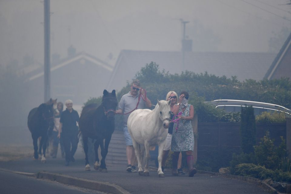 Horses are moved through heavy smoke in Carrbrook as residents were evacuated