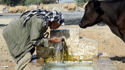 Les ressources en eau en débat à la 4ème édition du