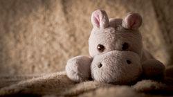 England: Mutter kauft Aldi-Plüschtier: Als sie es näher betrachtet, erkennt sie die