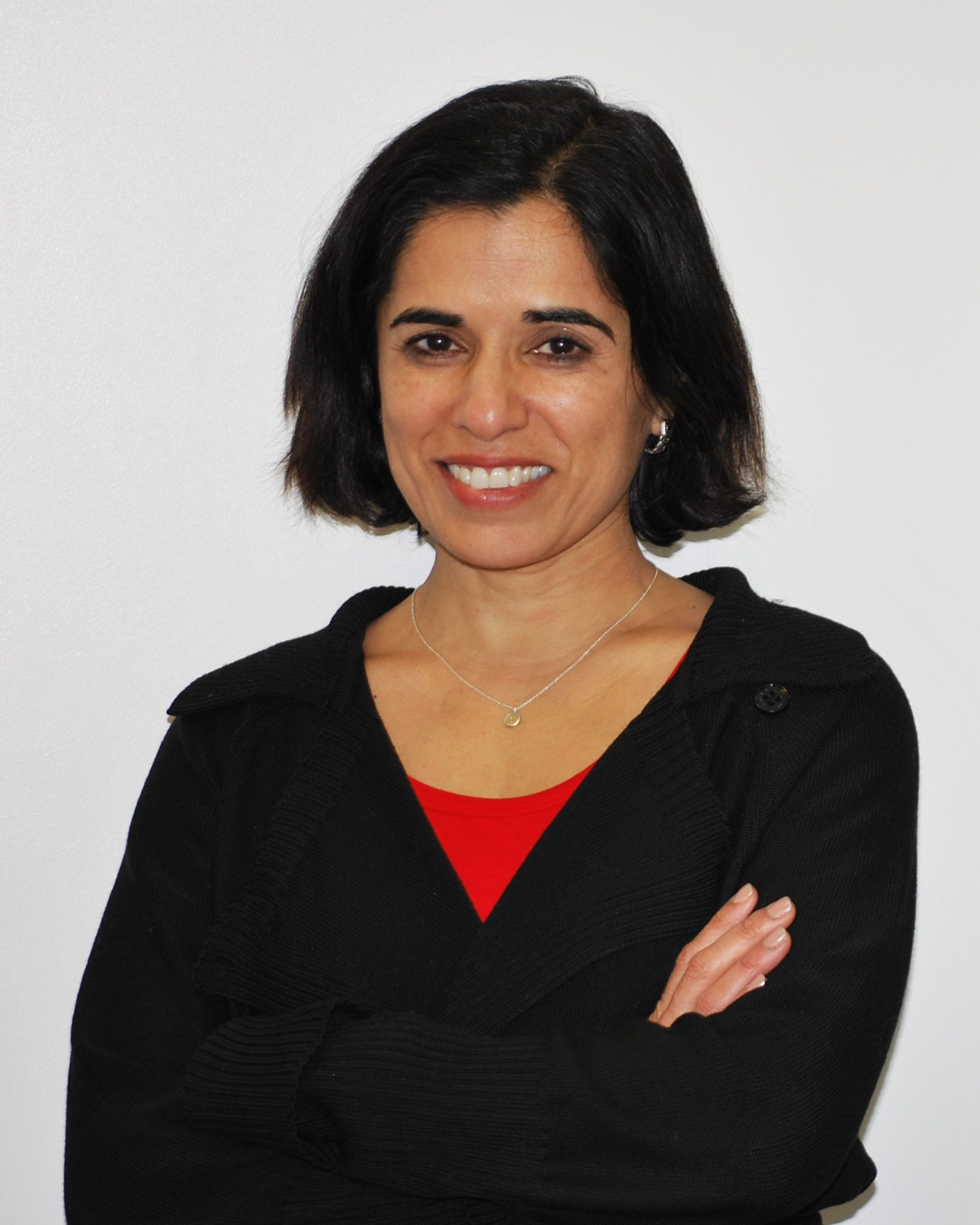 "Seema Nanda was appointed as the head of the Democratic National Committee on June 29. ""People are hurting al"