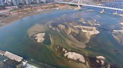 4대강 사업의 홍수예방효과가 돈으로