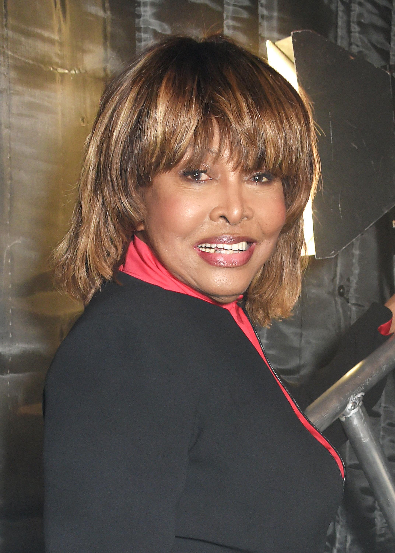 Αυτοκτόνησε ο γιος της Tina Turner,