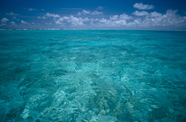 Crystal-clear water off Midway Atoll, about 1,200 miles northwest of Honolulu. The Northwestern...
