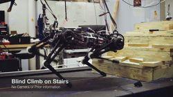 MIT가 일부러 눈을 없앤 '로봇개'가 계단을 정확히