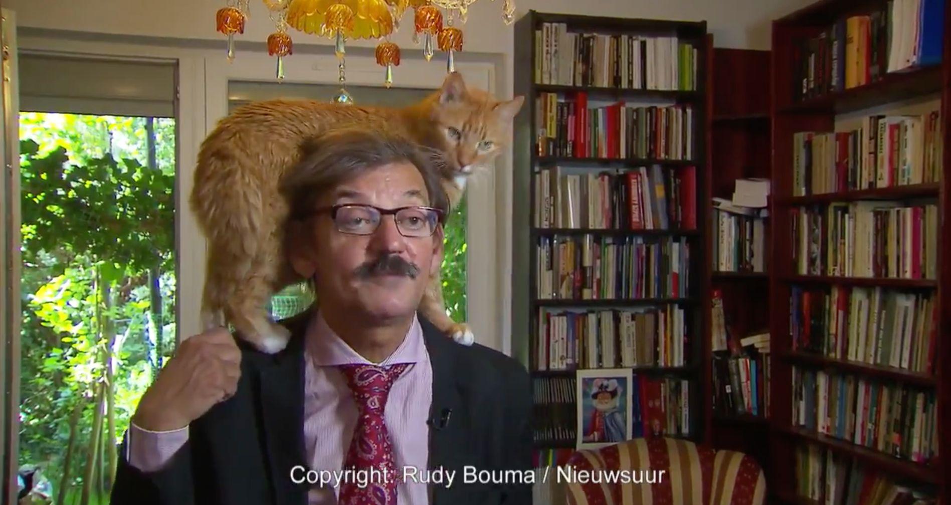 사법권 장악문제에 대한 학자의 인터뷰에 고양이가