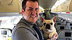 Hund bekommt im Flugzeug Atemnot – die Stewardessen handeln genau