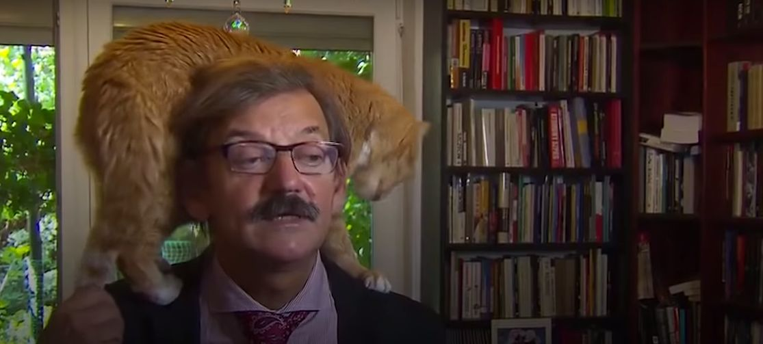 Son maître avait des choses très sérieuses à raconter, ce chat en a décidé