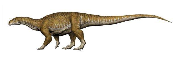 """On a découvert """"l'ancêtre"""" des dinosaures"""