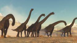 Γιγαντιαίος δεινόσαυρος, ηλικίας μεγαλύτερης των 200 εκατ. ετών, ανακαλύφθηκε στην