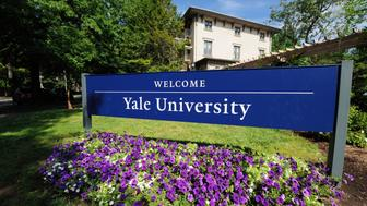 New Haven, Connecticut, USA - July 25, 2016: Welcome to Yale University sign located along Trumbull Street in New Haven, Connecticut.  Photograph taken with purple flowers blooming in the foreground