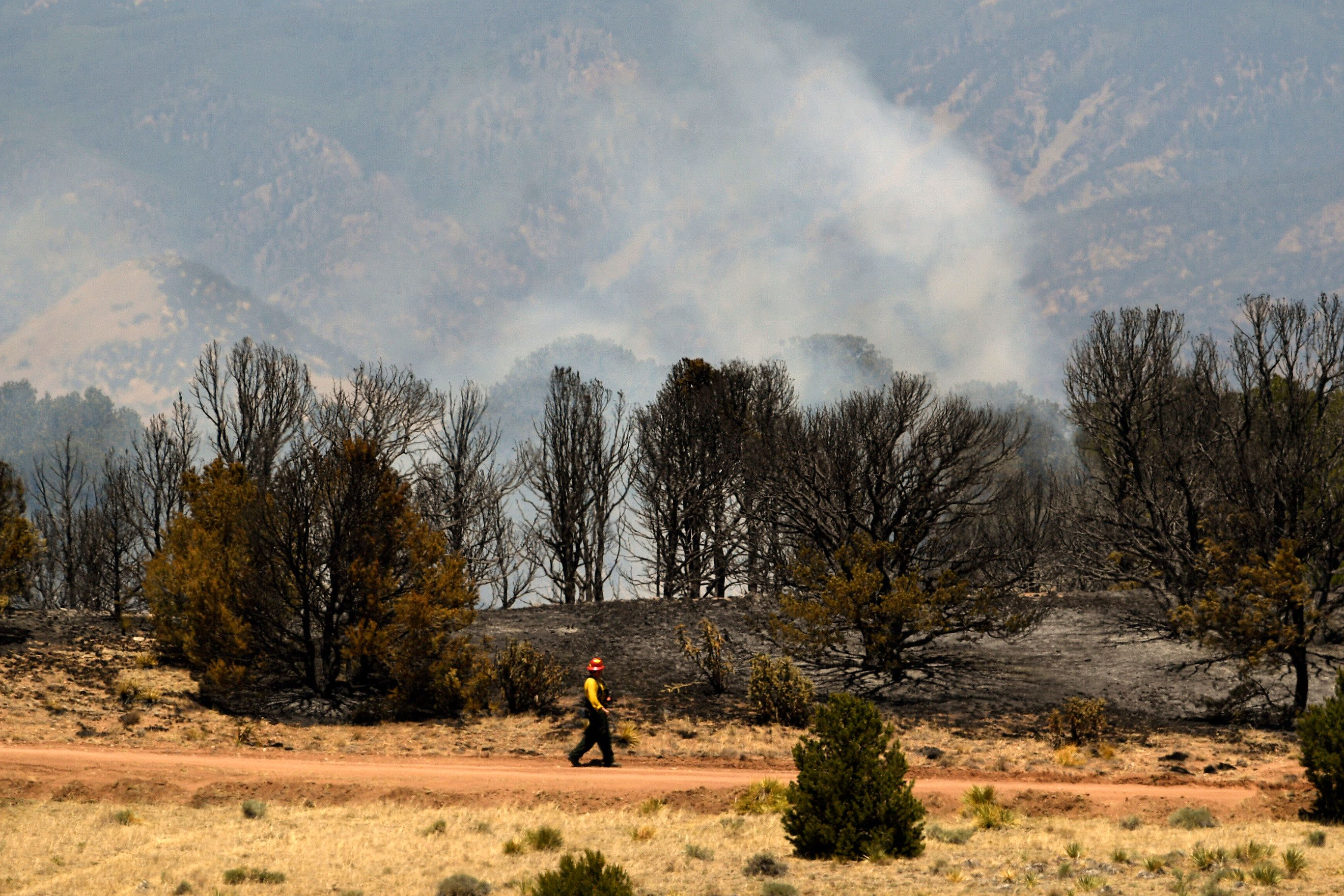 LA VETA, CO - JULY 8:  A firefighter checks on a spot fire near the northern end of the Spring Creek Fire on July 8, 2018 in La Veta, Colorado. The Spring Fire has now burned an area slightly larger than the city and county of Denver. The fire has burned 106,985 acres and currently stands at 55% containment.  (Photo by Helen H. Richardson/The Denver Post via Getty Images) (Photo by Helen H. Richardson/The Denver Post via Getty Images)