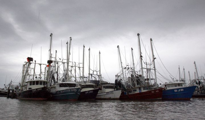 A bill amending the 1976 Magnuson-Stevens Fishery Conservation and Management Act would remove annual catch limits