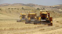 3.200 hectares de terres agricoles déclassés pour la réalisation de zones