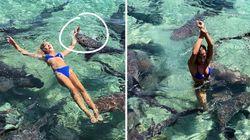 Une instagrameuse mordue par un requin en pleine séance photo