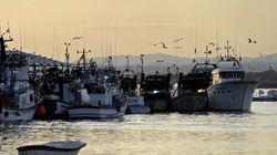 Accord de pêche Maroc-UE: à quelques heures de l'échéance, les négociation se