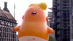 Trump Baby Balloon Heading To