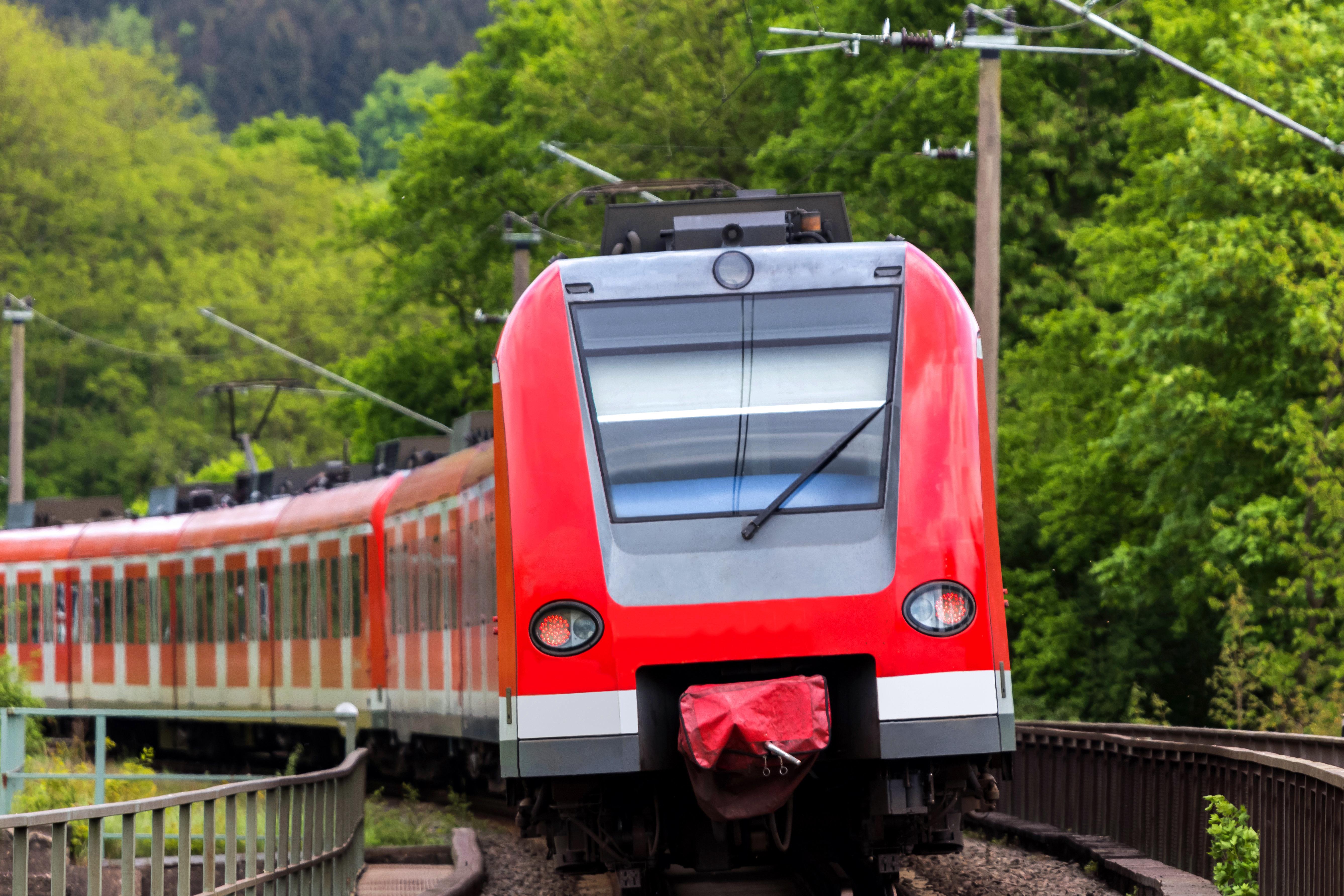 Eine Bürgerwehr der rechtsextremen NPDsoll in einer Berliner S-Bahn patrouilliert haben.