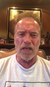 """""""Wie eine nasse Nudel"""": So rechnet Schwarzenegger nach Putin-Treffen mit US-Präsident Trump"""