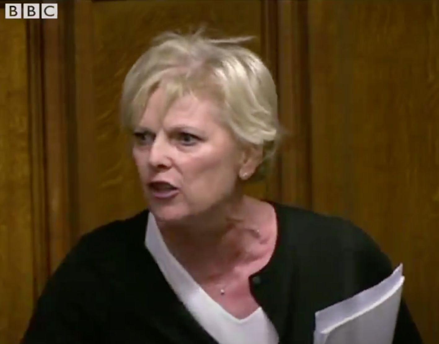 Britische Politikerin rastet im Parlament aus –und entlarvt die Heuchelei der Brexit-Hardliner
