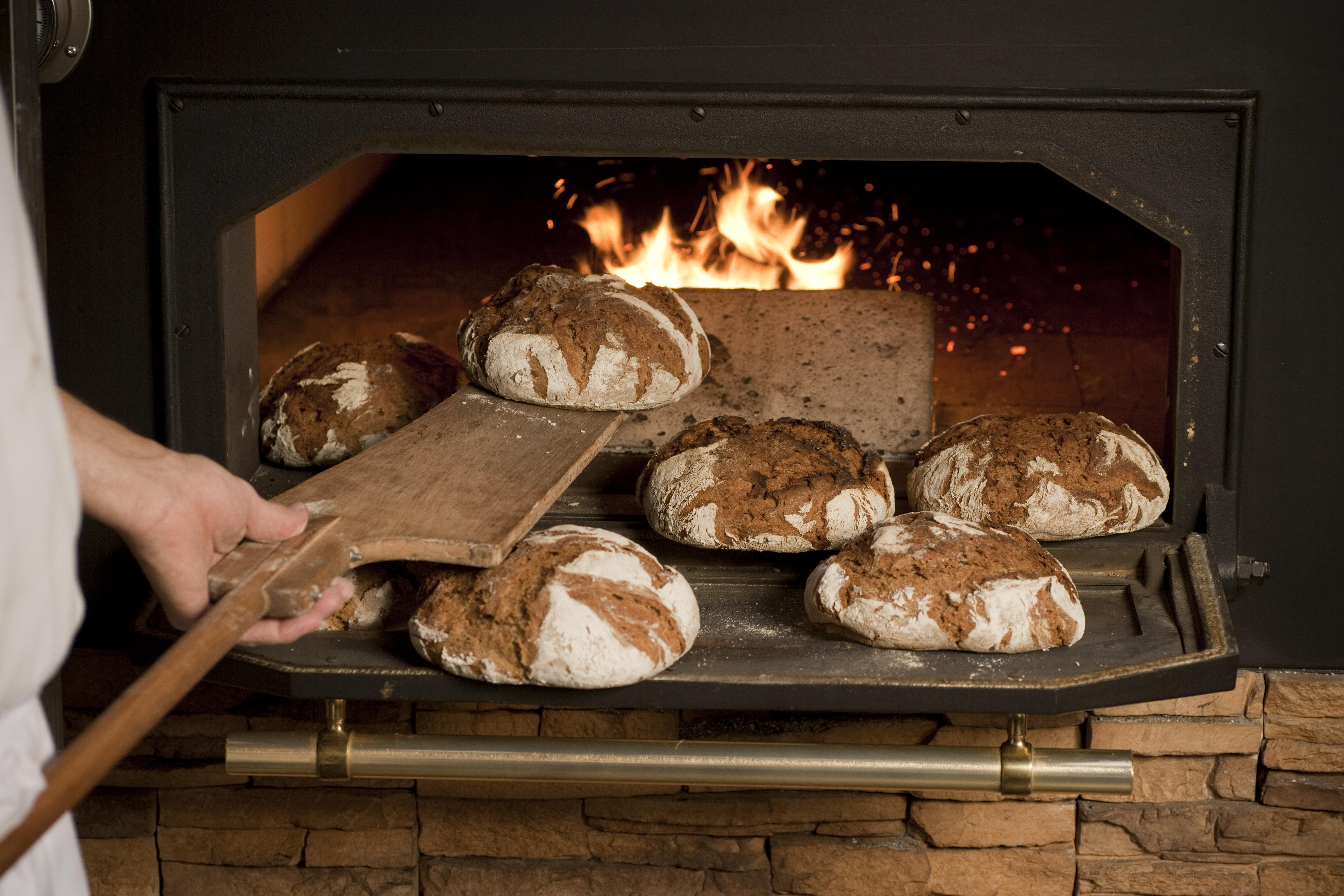 Ανακαλύφθηκε η παλαιότερη συνταγή ψωμιού, ηλικίας 14.000 ετών και μας αποκαλύπτει πολλά για τη σημερινή μας