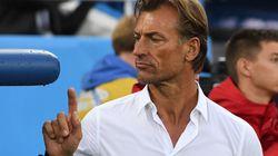 Non, Hervé Renard n'entraînera pas la sélection nationale algérienne
