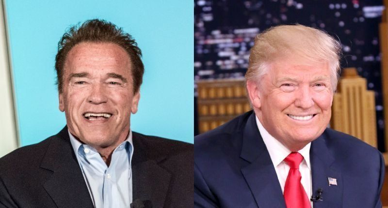 Schwarzenegger calls Trump a 'little wet noodle' after Putin news conference