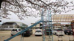 일본 초등학생의 '야외수업'으로 인한 사망이 크게 문제인