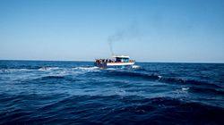 Bloqué au large de Zarzis depuis deux semaines: Le Sarost 5 avec à son bord 40 migrants va enfin
