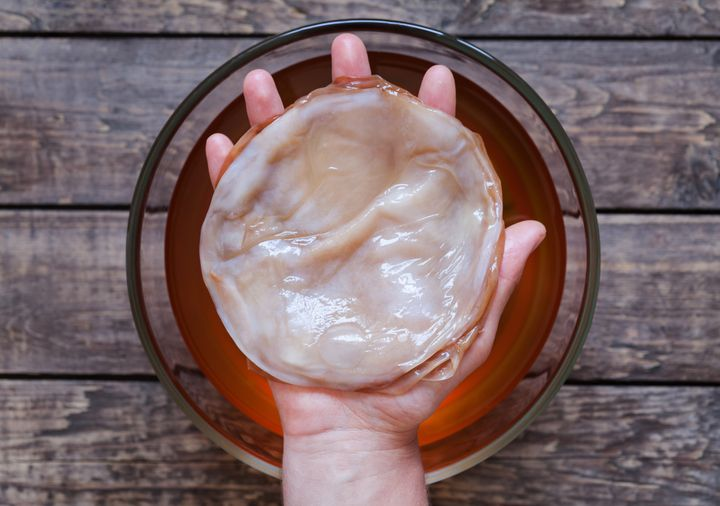 The scoby -- symbiotic cultures of bacteria and yeast -- infuses kombucha with yeast and beneficial bacteria to create fermentation.