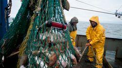 Le Maroc et l'UE s'accordent sur le contenu du futur accord de pêche, incluant le Sahara