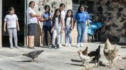 De New York à un village mexicain, parcours inversé pour des enfants de