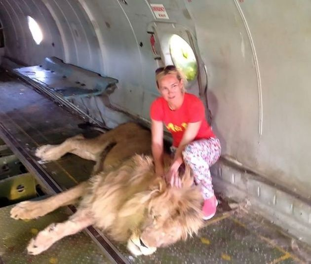 Ρωσίδα πάει να βγάλει selfie με λιοντάρι. Εκείνο την δαγκώνει και αρχίζει να την σέρνει σαν πάνινη