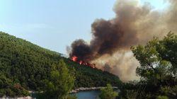 Υπό έλεγχο η μεγάλη πυρκαγιά μετά τις ολονύχτιες προσπάθειες της