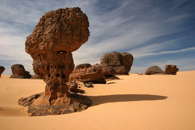 Tourisme saharien: réduction de la durée d'octroi de visas pour les