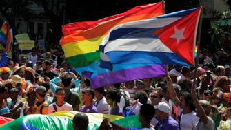 People take part in a gay pride parade during an event ahead of International Day Against Homophobia in Havana May 10, 2014.   REUTERS/Jorge Luis Banos (CUBA - Tags: SOCIETY)