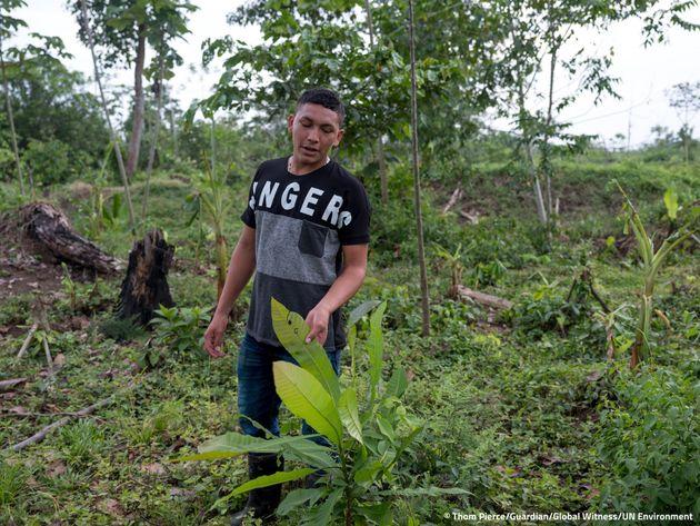 Ramón Bedoya camina por las tierras de su familia y muestra la vegetación que está amenazada por