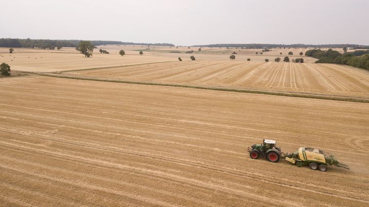 A tractor pulls a square baler press and creates square bales from the straw of a harvested wheat field for sprinkling and fe
