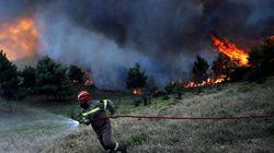Feuer in Griechenland: Das sagen Experten zur Gefahr in
