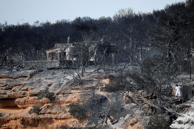 A local walks on a burnt slope following a wildfire at the village of Mati, near Athens,