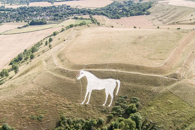 The English landscape, such as here surrounding the White Horse of Westbury, Wiltshire, is parched following...